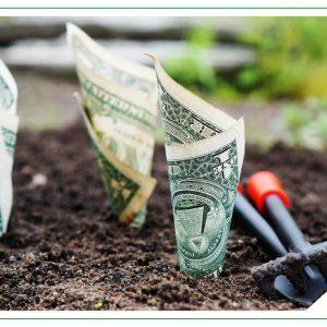 Trading Fondos De Inversión