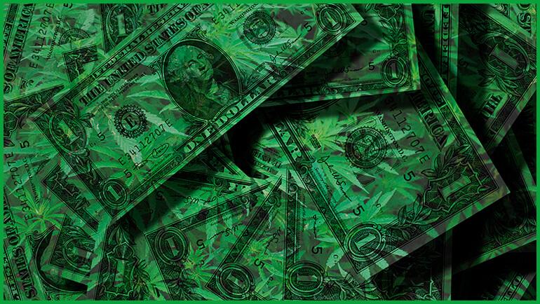 Invierte En Marihuana. Todo Lo Que Debes Saber